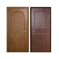 Дверь с натуральным шпоном SS31